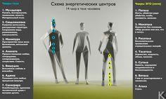 """инфографика """"чакры"""" в теле человека. йога"""