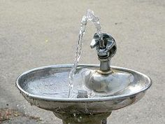 "Have a ""bubbler"" vs. ""water fountain"" debate"