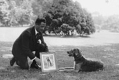 Laddie Boy, the most famous Presidential dog in history, owned by President Warren Harding