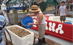 Biloxi MS Fisherman & Shrimpers