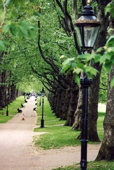 Hyde Park, London - one hell of a park, many places to wander around, regular fab' exhibitions in Serpentine Gallery ...