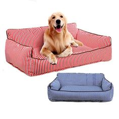 Dog supplies, accessories and dog clothes. Puppy Beds, Pet Beds, Dog Sofa Bed, Sofa Beds, Dog Bedroom, Bed Cushions, Medium Dogs, Dog Supplies, Best Dogs