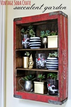 Vintage soda crate turned into a kitchen shelf for a succulent garden
