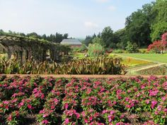 biltmore estate garden-need to go again this spring. winery is awesome too