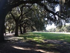 1000 Images About Scenic Outdoors Savannah Ga On