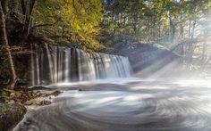 Lataa kuva Aamulla, vesiputous, dawn, wales, lake, metsä