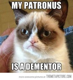 Grumpy cat is grumpy to resemble soul-sucking creatures that represent depression is pretty sever..... (you might as well have a ginger patronus) haha I kid the ginges :)