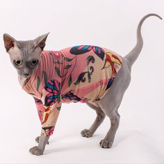 Long Sleeve Pet Clothes in Butterfly and Sparrow by SimplySphynx, $42.00
