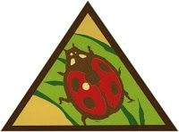 Girl Scout Leader 101: Brownie: Bugs Badge