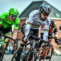 270 Best Peter Sagan Images In 2019 Cycling Pro Cycling Bike