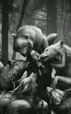19 Best Ideas For Drawing Wolf Pack Wolves Wolf Love, Bad Wolf, Fantasy Kunst, Fantasy Art, Wolves And Women, Werewolf Art, Alpha Werewolf, Wolf Spirit Animal, Fantasy Wolf