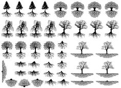 """Trees & Roots 3/8"""" to 1-1/4"""" Black #427 or White #428 Fused Glass Decals"""