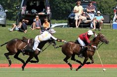 Weekend at the Cowdray Park Polo Club.