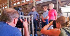 Ministeri Ville Niinistön vierailu maitotilalla sai kuvaajat liikkeelle, Hämeenkyrö
