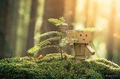 Danbo im Wald pt.1 by jenskroen, via Flickr