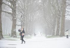 White park: The capital's Green Park in Westminster is barely living up top its name, with snow having reached London earlier