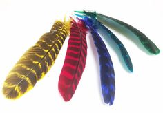 "Turkey Feathers, 8-12"", Dyed, per pack of 12 #turkey-feathers #Turkey-Quills"