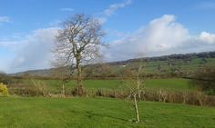 February sunshine at Odle Farm. #EastDevon #blackdownhills #countryside