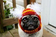design Mützen für Hunde hundebekleidung deko