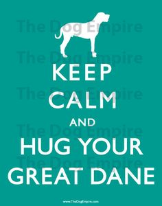 Keep Calm and Hug Your Great Dane Poster Dog Quotes Funny, Funny Dogs, I Love Dogs, Puppy Love, Blue Great Danes, Dane Puppies, Baby Dogs, Pet Dogs, Pet Life