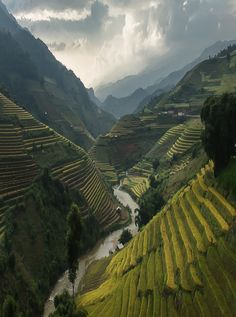 explore the gorgeous rice terraces of mu cang chai, vietnam