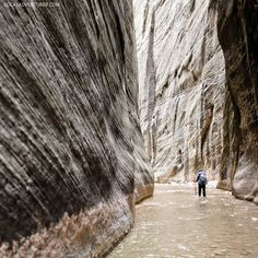 The Narrows Hike (15 Best Zion National Park Hikes).