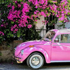Love this pink car Pink Volkswagen Beetle, Pink Beetle, Pink Love, Pretty In Pink, Hot Pink, Perfect Pink, Vintage Pink, Moda Rock, Foto Instagram
