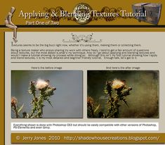 Thistle Applying and Blending Tutorial Promo | Flickr - Photo Sharing!