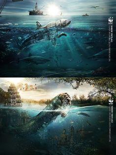 WWF Global Warming / Print