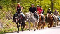 Scenic Horseback-Riding Tour from San Juan