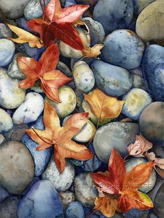 Watercolor autumn leaves and stones - DEBBIE BAKKER  Art and Illustration