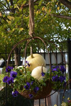 Dont just empty and store your summer hanging baskets change them out for a fall display and extend the season. - Sequin Gardens