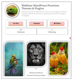 Displaying Pinterest Feeds On Weblise Now So Easy. Try New WordPres Plugin: Pinterest Feed Pro - https://weblizar.com/plugins/pinterest-feed-pro/