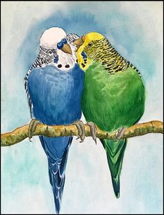 Original Watercolour Painting Budgerigars Budgies Birds Parakeets Die Wellensittiche & Original Aquarell Bild Vogel Papageien The post Original Aquarell Wellensittiche Wellensittiche Vögel Sittiche appeared first on Marcia Sterling. Watercolor Bird, Watercolour Painting, Bird Drawings, Cute Drawings, Vogel Illustration, Parrot Painting, Mini Canvas Art, Budgies, Bird Art