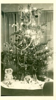 Old-Style Christmas Trees Christmas Tree Pictures, Vintage Christmas Photos, Xmas Photos, Old Christmas, Old Fashioned Christmas, Little Christmas, Christmas Tree Ornaments, Christmas Stuff, Vintage Photographs