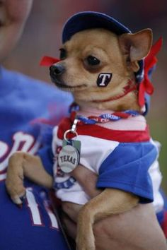 A little Texas Rangers fan - cute!... Brought to you in part by StoneArtUSA.com ~ pet memorials since 2001