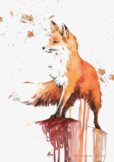 Fox, Pintado A Mano De Fox, Cartoon Fox, Red Fox Imagen PNG
