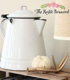 Spray-Painted Pumpkins | The Rustic Boxwood | diy, spray painted pumpkins, pumpkin makeovers, chalk paint, neutral fall decor, fall vignette