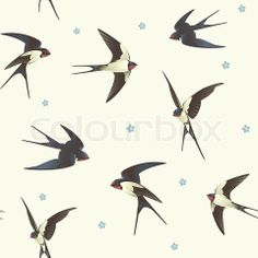 Vector of Pattern with swallows