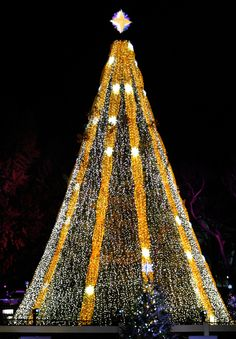 The National Christmas Tree, shown here at the Annual Tree Lighting at The Ellipse, features elegant silvery whites and sparkling golds. Outdoor Christmas Decorations, Christmas Themes, Christmas Lights, Christmas Holidays, Unique Trees, Beautiful Christmas Trees, Magical Christmas, Tree Lighting, Xmas Tree