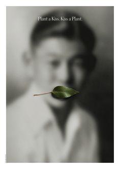 Plant a Kiss, Kiss a Plant, Jerry Takigawa