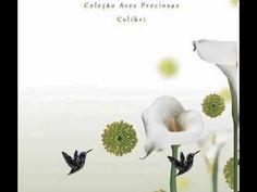 Coleção Aves preciosas - Colar e Pingente c/ corrente Colibri - Joias Carmine