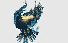 https://img4.goodfon.ru/wallpaper/big/6/5d/ptitsa-krylia-sokol-priroda-fon-art.jpg