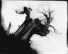 "Anne Brigman ""Storm Tree"" 1915"