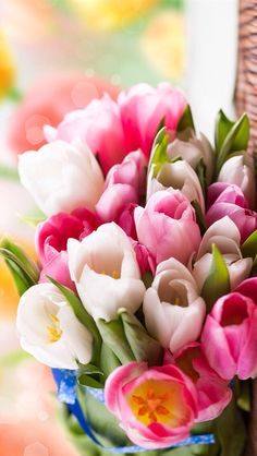 Wallpaper iPhone #spring flowers