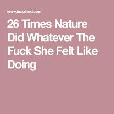 26 Times Nature Did Whatever The Fuck She Felt Like Doing