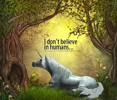 Mythical Creatures Art, Magical Creatures, Fantasy Creatures, Unicorn Quotes, Unicorn Art, Fantasy World, Fantasy Art, Unicorn And Fairies, Fairy Quotes