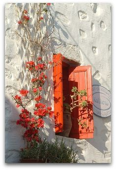 Bouganvilla on a white background always is an eye catcher !~!~! Window in Amorgos by Youssef Amaaou on Flickr