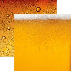 Reminisce - Craft Beer Collection - 12 x 12 Double Sided Paper - Beer