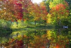 5 Things to Know: State Parks to see fall colors. Patch file